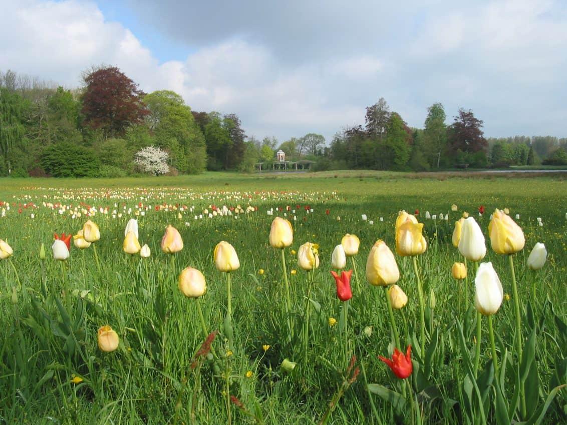 Garden-days-at-Park-of-Beervelde-Park-van-Beervelde-1132x849